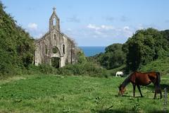 La Chapelle Saint-Simon  Sainte-Honorine-des-Pertes (Basse-Normandie) (2015-09-01 -01) (Cary Greisch) Tags: france cheval chapelle calvados fra bassenormandie stsimon saintehonorinedespertes carygreisch