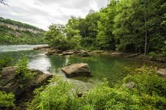 _DSC8373 (jerryho1212) Tags: nikon snow ho jerry hiniagara falls niagara d610 canada    wild lihsi          2485mm american river stream trail