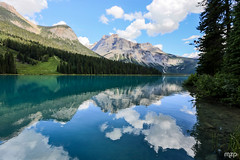Emerald Lake (mzagerp) Tags: road trip usa canada rockies rocheuses etats unis mzagerp banff national park lake louise moraine lac emerald meraude plain six glaciers columbia icefield glacier