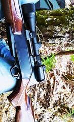 #browning #30.06 #shotgun (luisgonalves2) Tags: 30 shotgun browning