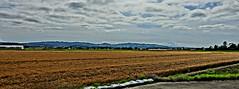 Brown Barley Fields Near Kuriyama (sjrankin) Tags: 23july2016 edited kuriyama hokkaido japan farms fields flat plain barley hdr