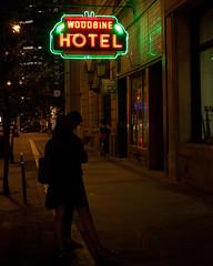 (Short in German) Tags: street life dark neon sign bar hotel main silhouette