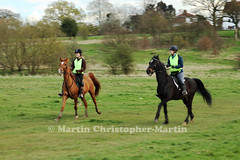 Horses on Chingford Plain 2 (martin christopher-martin) Tags: epping eppingforest chingfordplain horses horse rider horseriders equestrian canter trot gallop walk