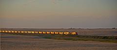 A glint moment, BNSF coal load heading towards Alliance, Nebraska. (Wheatking2011) Tags: glint bnsf coal load near sunset between berea hemingford headed towards alliance