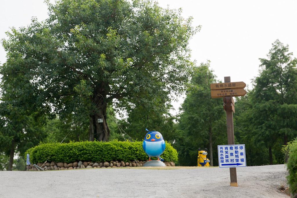 藍鵲227
