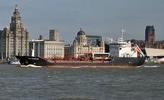 Stolt Guillemot (GB) (Kay Bea Chisholm) Tags: cunardbuilding threegraces portofliverpoolbuilding liverbuilding tanker seacombeferry wallasey liverpool rivermersey guillemot stolt
