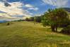 Vacas (Rafa Devesa) Tags: cantabria altocampoo reinosa argüeso gato avestruz paisaje atardecer surf agua mar angel flor azul fuentede picosdeeuropa españa spain nikon d3200