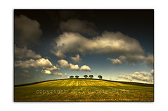 Five (RonnieLMills) Tags: road county trees ireland field clouds landscape nikon skies angle cloudy five farming wide down labs agriculture northern six tamron rd topaz ends kerrs newtownards 1024 d90 restyle