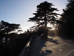 Highway 1 (FRAUSCHNERT) Tags: monterey kste felsen pflanzen pazifik zypressen sonnenuntergang kalifornien sommer hitzewelle roadtrip rundreise mietwagen unterwegs highlights usa amerika westkste hitze heis urlaub frauschoenert reise highwaynr1