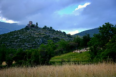Gsol, la torre del castell i antigues feixes de conreu. (Angela Llop) Tags: nia spain gsol alturgell sheep
