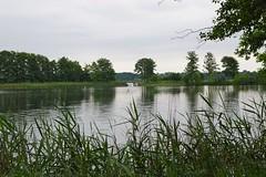 (frankbehrens) Tags: schaalsee mecklenburg biospherereserve biosphrenreservat