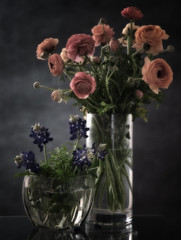 Spring Still Life (Anne Worner) Tags: vase crystal water tall wide flowers ranunculus bluebonnet table standing stilllife floral blossom bloom stems petals leaves anneworner ranunculaceae bouquet transparent clear bud blooming