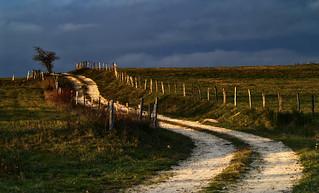 Chemin faisant,  au soleil couchant....