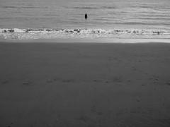 Alone (xhupf) Tags: blackandwhite bw beach water liverpool olympus omd crosby mkii anotherplace em5 olympusomdem5