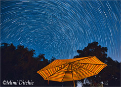 One Small Perseid And Star Trails (Mimi Ditchie) Tags: milkyway perseidmeteor astrophotography meteor startrails stars umbrella night nightsky getty gettyimages mimiditchie mimiditchiephotography