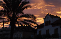 Sitges.Catalonia (Natali Antonovich) Tags: sitges catalonia spain landscape sunset architecture palm tree sky seasideresort seashore seaside seaboard