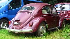 VW Kfer (vwcorrado89) Tags: vw kfer bug beetle volkswagen 1300 type 1 typ