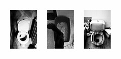 () Tags: collage three bathroom toilet wc cat shit indoor kitty animal bw blackandwhite monochrome apartment home ugly white ioannina greece