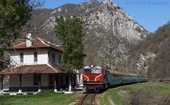 The small train (Radler.z) Tags: 77002 16105 train narrow gauge septemvri dobrinishte tsepina stop locomotive bdz