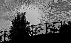 I Have Lost My Way But Not My Heart (Anna Kwa) Tags: amsterdam bicycles silhouettes clouds sun light netherlands europe annakwa nikon d750 afsnikkor70200mmf28gedvrii my riding hills always lost seeing heart soul throughmylens travel world canal river moment