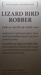 Sauronitholestes - Lizard Bird Robber - Info (juan_guthrie) Tags: drumheller alberta royaltyrrellmuseum dynosaur