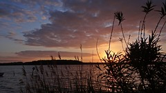 Sonnenuntergang (Gartenzauber) Tags: gorgeous fineart ngc npc soe saariysqualitypictures fleursetpaysages
