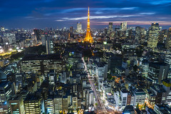Tokyo City (mikemikecat) Tags: city japan night zeiss t landscape tokyo cityscape nightscape sony carl 日本 tokyotower 東京 nightview 夜景 東京タワー cityview 東京鐵塔 carlzeiss 浜松町 2470 a7r 世界貿易センタービル sel2470z 世界貿易センタービルディング4 mikemikecat