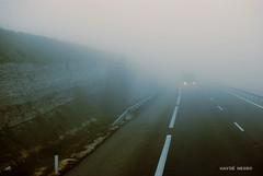 Heavy Fog (Hayd Negro) Tags: road trip travel viaje fog truck nikon camino carretera negro foggy camion niebla sb d91 hayd bublado detxu detxu9one haydnegro detxu91 nikond610