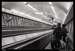 Iniciando el viaje (meggiecaminos) Tags: bw white black blanco stairs underground hungary metro negro budapest tube bn staircase scala bianco metropolitana nero escaleras scalamobile ungheria conveyance hungría deákferenctér mezzoditrasporto escalerasmecánicas mediodetransporte