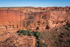 Kings Canyon Northern Territory-7