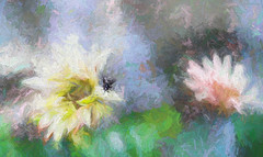 don't shoo fly (Dotsy McCurly) Tags: dont shoo fly flowers nature beautiful plants hss happy sliders sunday photoshop topaz nikon d750 dof nj