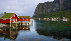 a Northern life on the edge (lunaryuna) Tags: norway lofoten lofotenarchipelago lofotenislands kvalvik reine reinefjorden mountain lofotenwall bay water colours thecoloursofnorway rorbuer fishermenhuts summer season seasonalwonders landscape seascape coast shoreline lunaryuna