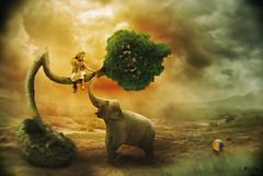 Joy (Rijba) Tags: girl tree sunset joy happy photoshop manipulation art ball play elephant animal game branch digital