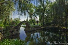 Yuanmingyuan  (mingsquared) Tags: china park bridge lake water beautiful garden landscape nikon scenery beijing ruin   nikond3200  yuanmingyuan tokinaaf1224mmf4