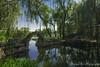 Yuanmingyuan 圆明园 (mingsquared) Tags: china park bridge lake water beautiful garden landscape nikon scenery beijing ruin 北京 中国 nikond3200 圆明园 yuanmingyuan tokinaaf1224mmf4