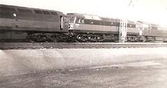 Cardiff Canton 27th March 1965 (Robin Summerhill) Tags: british railways steam diesel 1965 cardiff canton depot class 47 52 brush type 4 western