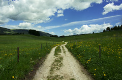 Path to where? (elenamalossini) Tags: pathway path way street walk italy outdoor nikon flower green nature life sky mountain serene sun mood yellow clouds landscape exploration adventure travel perspective