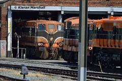 175 and 134 at Connolly, 19/7/16 (hurricanemk1c) Tags: dublin irish train gm rail railway trains 121 railways 141 irishrail 175 134 generalmotors 2016 emd connolly iarnrd ireann rpsi iarnrdireann railwaypreservationsocietyofireland 1330inchicoreconnolly rpsidieseltransfer