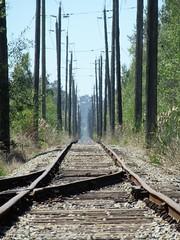 CPR Tracks (SqueakyMarmot) Tags: vancouver suburb burnaby bigbend cprrailway tracks vanishingpoint