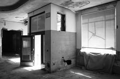 NW 23rd, OKC (James Meeks) Tags: door windows urban abandoned ruins interior plastic blinds gr okc ok ricoh oklahomacity grii
