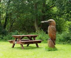 2016_07_0301 (petermit2) Tags: woodensculpture sculpture kingfisher pottericcarr potteric doncaster southyorkshire yorkshirewildlifetrust wildlifetrust ywt