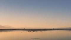Serenity of Salton Sea (Linda Goodhue) Tags: saltonsea sea southerncalifornia california desert water sky sunset birds mountains landscape nature nikond800 lindagoodhuephotography minimalism travel