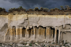 Geologic curiosity (Marc Briggs) Tags: dsc3633cw columns column ash volcanic steamvent caldera longvalleycaldera tuff volcanictuff bishoptuff tephra
