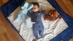Animal Party (Canadian Veggie) Tags: astrid infant stuffedanimals ekua pauline maurice