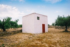 2009161018 (panaromico) Tags: house microhouse minihouse minihome cute cutehouse olivos bluesky olive olives architecture nature