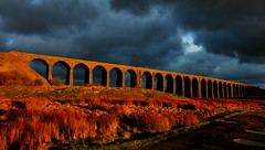 Radiant Ribblehead (images@twiston) Tags: radiantribblehead darkarches golden hour ribblehead viaduct ribbleheadviaduct sunlit arches settle carlisle settlecarlisle settleandcarlisle shadow shadows yorkshire northyorkshire midland railway main line 1875 battymoss battywifehole sebastopol belgravia jericho scheduledancientmonument arch ribblesdale dales 3peaks yorkshire3peaks path track dry stone wall evening winter january national park yorkshiredalesnationalpark fields grass farm farmland moorland moor sunset dark clouds sky landscape orange 24 fells manmade stonework my365year sunshine ominous brooding broody puddle explore explored 1 exploreno1 godsowncountry imagestwiston