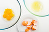 Egg yolk and egg white in separate glass bowl. Eggshell and egg on white plate. (annick vanderschelden) Tags: food egg chicken eggwhite eggyolk eggshell plate bowl white yellow glass female eaten albumen vitellus membranes protein choline ingredient cooking foodindustry edible chalazae collagen salmonellosis baking sweet savory emulsifier batch nutritional kcal caolries cholesterol fat cardiovascular speckled