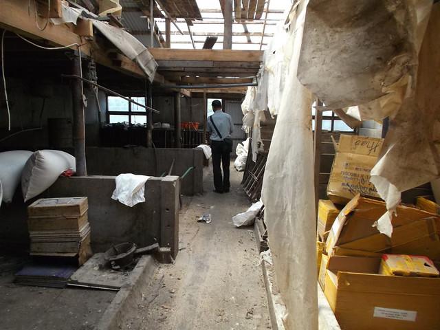 Уголовное дело оработе цеха позабою собак вСамаре закрыли