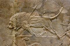 Bas-reliefs assyiens (Ninive) (2) (Mhln) Tags: england london museum londres angleterre british ninive khorsabad assyrie