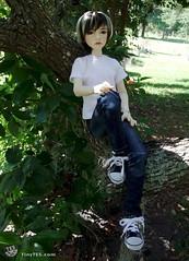 Johnny  Dollstown Hue (tinytes) Tags: bjd hue 15year dollstown tinytes